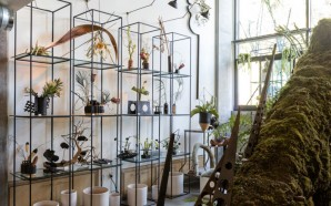 Persephones_Botanica-conceptual-pop-up-shop-LA-07-800x797
