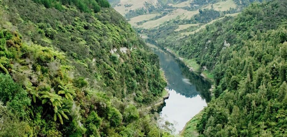 Whanganui-River-personhood-1580x542