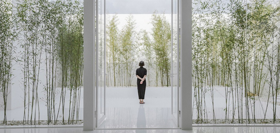 Bamboo-Forest-on-the-Roof