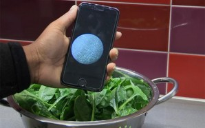 Smartphone-Based System Detects Bacteria In Food